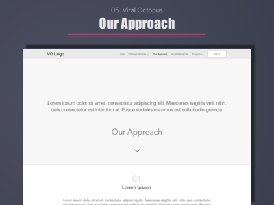 Viral Octopus - Our Approach web user experience portfolio ui wireframe expert ux india designer design best top