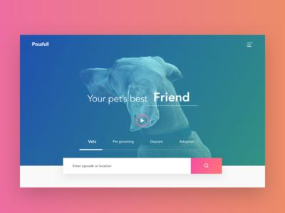 Home concept for a Vet service platform web ui shadows gradient search booking healthcare dog vets pets