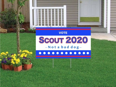 VoteScout2020