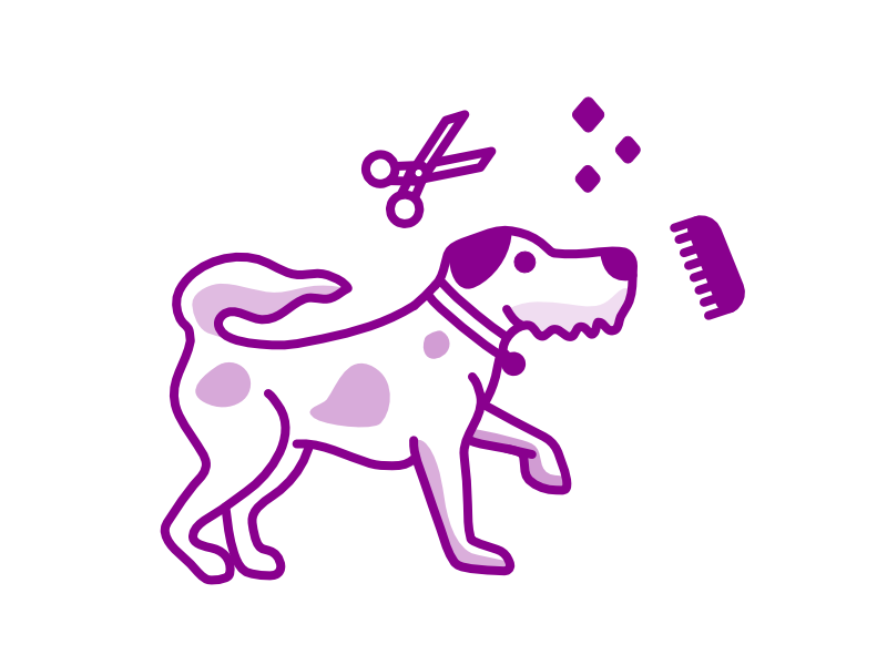 Dog Grooming ipad pro affinity designer procreate pet groomers grooming dog