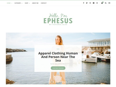 Ephesus Personal Blog WordPress Theme lazyload import woocommerce slider customizer mailchimp wordpress theme blog personal flashblue ephesus