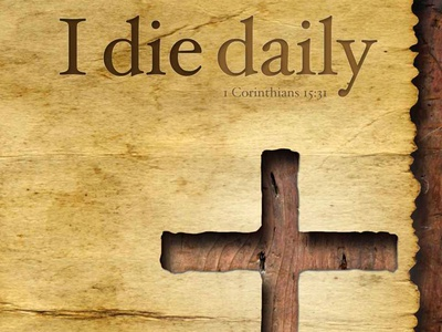 I Die Daily Book Cover