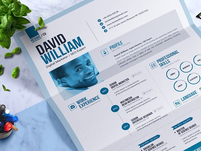 Professional Resume Builder Ms Word Resume Design Template