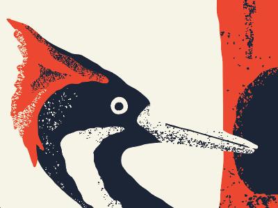 Alphabeast — Ivory-billed Woodpecker ivory-billed woodpecker extinct alphabeast