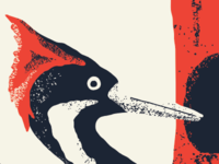 Alphabeast — Ivory-billed Woodpecker