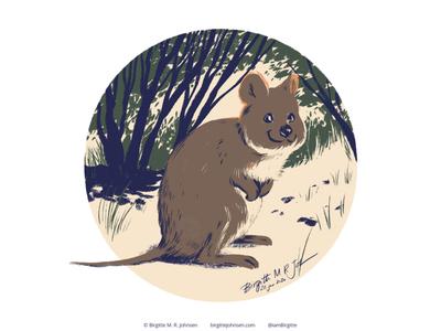 Quokka quokka follower suggested image six animals animals cute animal digital art digital illustration limited colours limited colour palette art illustration