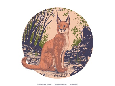 Caracal follower suggested image six animals caracal wildcats wildcat cute animal digital art digital illustration limited colours limited colour palette art illustration