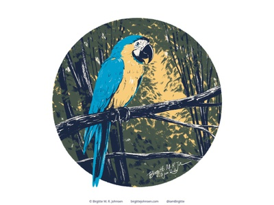 Blue And Gold Macaw follower suggested image six animals bird parrot macaw cute animal digital art digital illustration limited colours limited colour palette art illustration