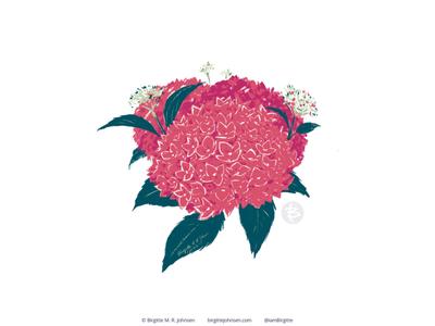 Hydrangea hydrangea flora flower huely challenge huely2020 huely art challenge digital art digital illustration limited colours limited colour palette art illustration
