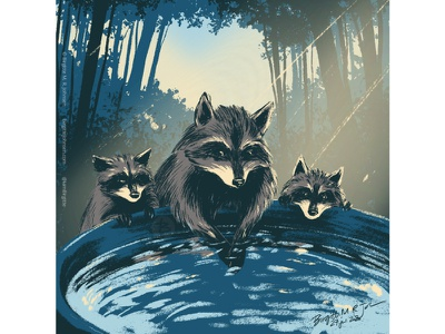 Raccoons huely challenge huely2020 huely raccoon raccoons cute animal digital art digital illustration limited colours limited colour palette art illustration