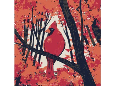 Red cardinal fall colours autumn colours fall autumn bird illustration huely challenge huely2020 huely red cardinal bird cute animal digital art digital illustration limited colours limited colour palette art illustration