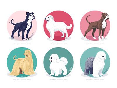 Doggust 2020, first six dogs dog illustration cute doggust2020 doggust dog digital art digital illustration animal art illustration