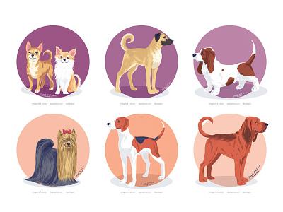 Doggust 2020, the second set of six dogs dog illustration doggust2020 doggust dog cute animal digital art digital illustration art illustration
