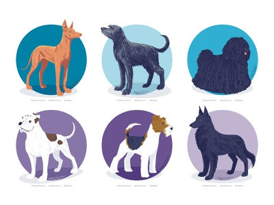 Doggust 2020, the fifth set of six dogs doggust2020 doggust dog illustration dog cute animal digital art art illustration