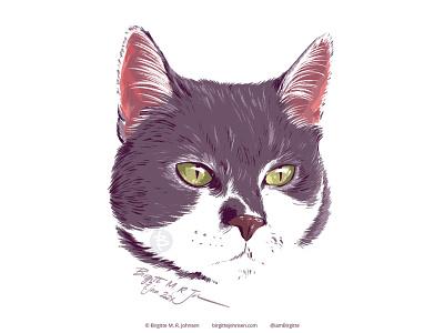 Magic - pet portrait portrait cute cat pet pet portrait cat cute animal limited colours limited colour palette digital art digital illustration art illustration