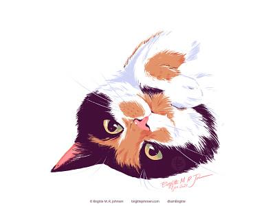 Nemesis - pet portrait portrait pet portrait pet cat cute animal limited colours limited colour palette digital art digital illustration art illustration