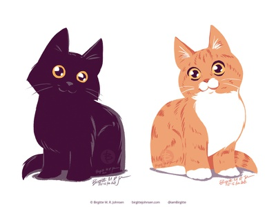 Cute kitties cat illustration kitten cat cute animal limited colours limited colour palette digital art digital illustration art illustration