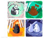 Bear Seasons