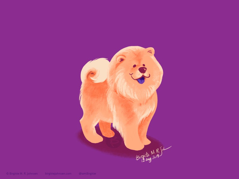 Chow Chow doggust2019 doggust dog illustration dog animal limited colours limited colour palette art illustration digital art digital illustration