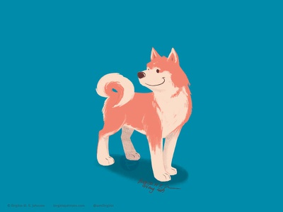 Akita limited colours limited colour palette dog illustration doggust2019 doggust dog art illustration digital art digital illustration