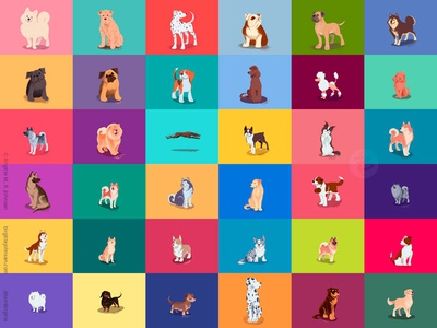 All 36 dogs drawn during August