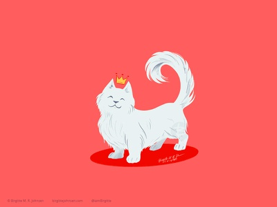 Majestic Munchkin cute cattember2019 cattember cat drawing cat illustration cat animal limited colours limited colour palette art illustration digital art digital illustration