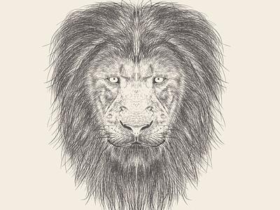 Set of Animals Illustrations Artwork lion king lion head art lion gorilla facial artwork face illustrator avatar illustration animals animal