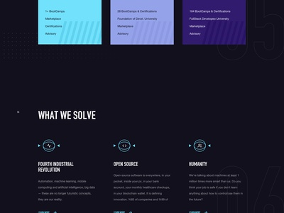 Developeo Home Page web design real work wolinger czech ux ui clean simple web website design
