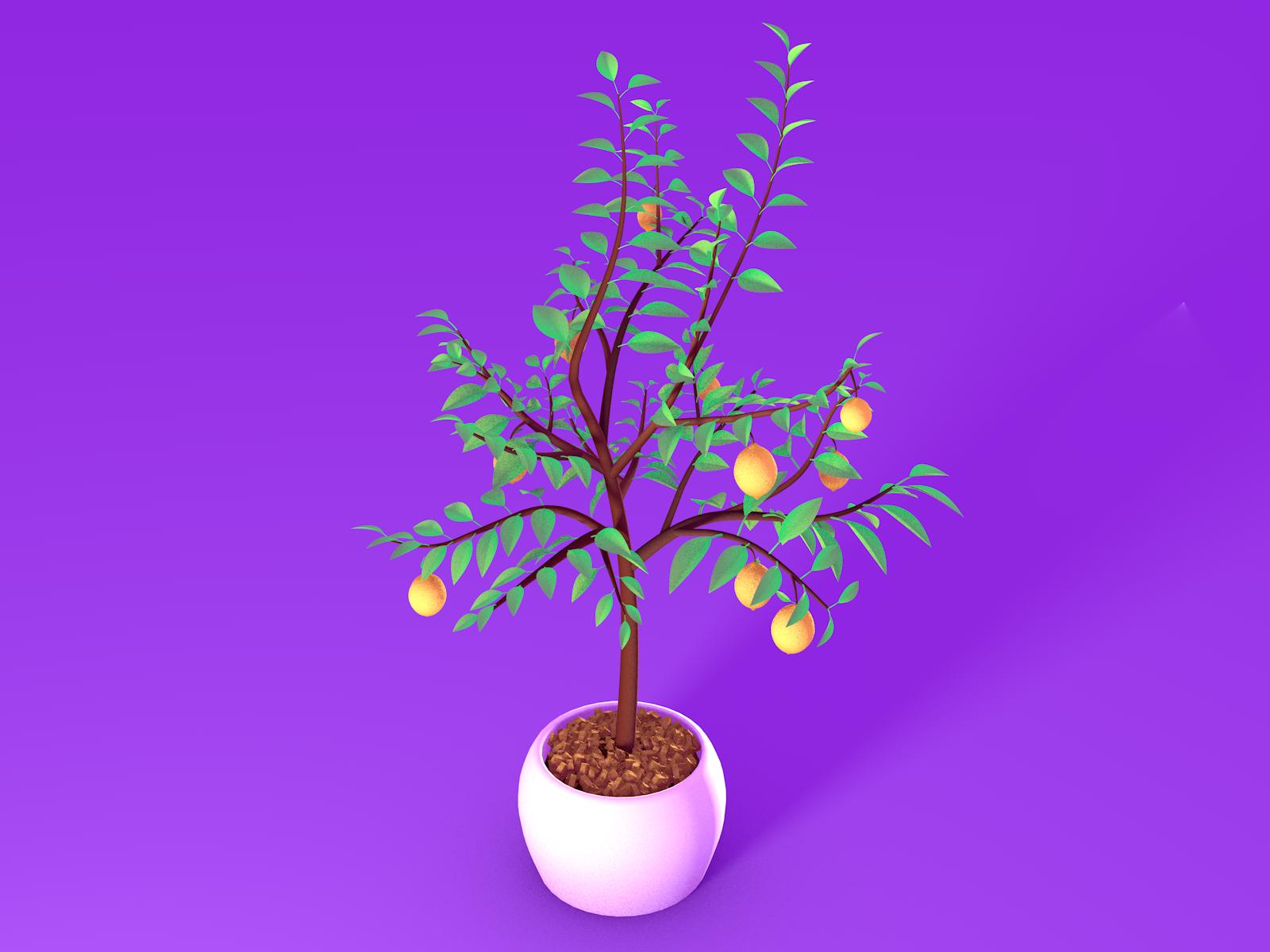 Lemontree scene full tree