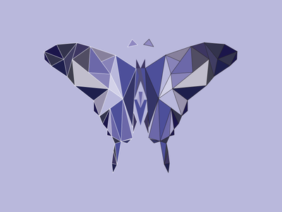 Polygon Butterfly graphic design shapes illustration polygon