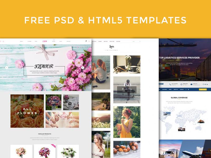 Free PSD and HTML5 Templates transportation ecommerce logistics blog online delivery psds shop free. flower