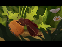 Enter the world of insects 2