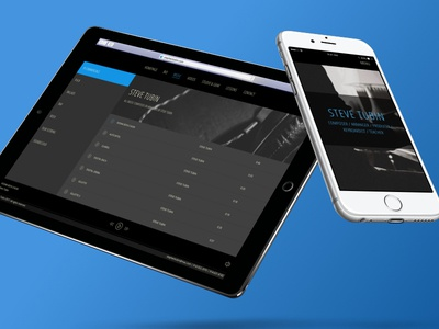 Steve Tubin - Composer Website Design music player website design responsive web player design website music