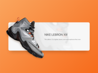 Quick draft for LEBRON XIII