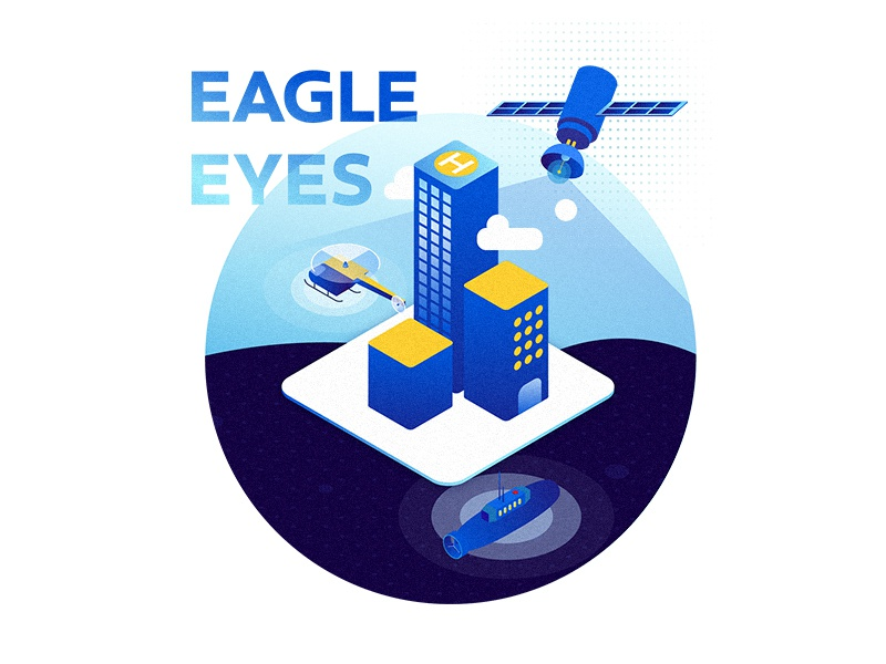 Eagle Eyes—Security Platform Illustration design security tech illustration