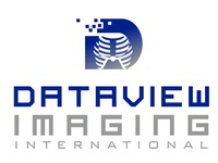 Dataview Imaging International Logo Design