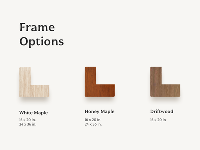 Frame Options website design branding layout wood typography website ui design minimal