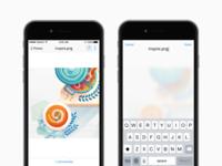 Dropbox Renaming Concept