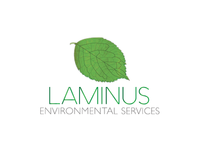 Laminus Environmental Services Logo