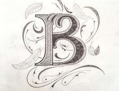 B Letter illustration flourishes script lettering