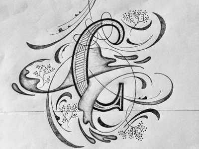 C illustration flourishes script lettering
