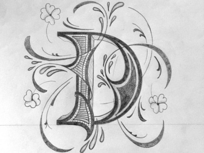 D illustration script flourishes lettering