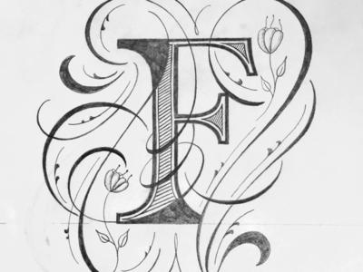 F illustration flourishes lettering