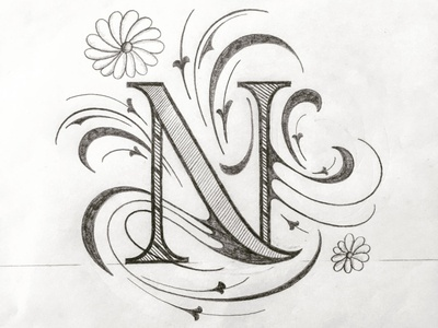 N illustration flourishes lettering
