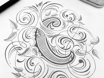 Flourished C sketch flourishes lettering