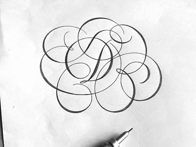 Flourished D sketch script flourishes lettering