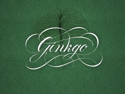 Ginkgo texture flourishes script lettering