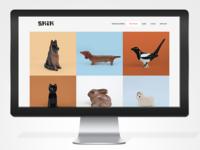 SKIK website 2