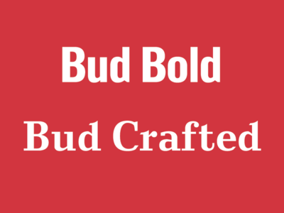 Bud Bold and Bud Crafted fonts lettering branding typography type