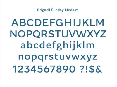 Brignell Sunday Medium ibtype branding font design type typography